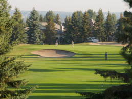 between the trees view of lush fairway, sand bunker, and manicured golf green at The Links at Spruce Grove