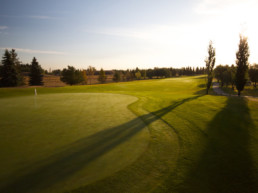 sun rising over The Links at Spruce Grove perfectly manicured green