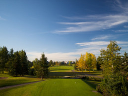 tee box overlooking tree lined fairway at The Links at Spruce Grove