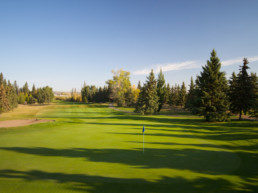 golf green and sand bunker at The Links at Spruce Grove