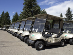power cart club cars at The Links at Spruce Grove